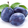 organic plum oil